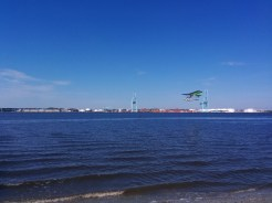 A rare sight - a plane flying just feet above the St. Johns River, viewed from near the JU baseball field.
