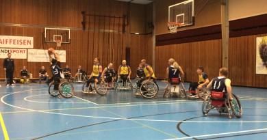Basket, 2015 - CFRGE