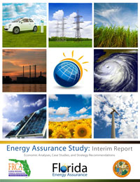 energy_assurance_interim_report_march_2013_cover