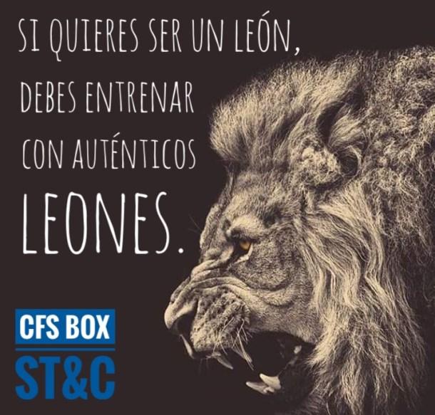 Wod CFS Box Leon CrossFit Sevilla entrena leones