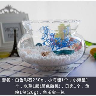 透明魚缸 的拍賣價格 - 飛比價格