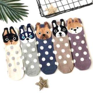 吉娃娃襪子 的拍賣價格 - 飛比價格