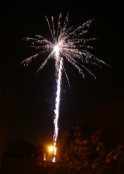 firework-52