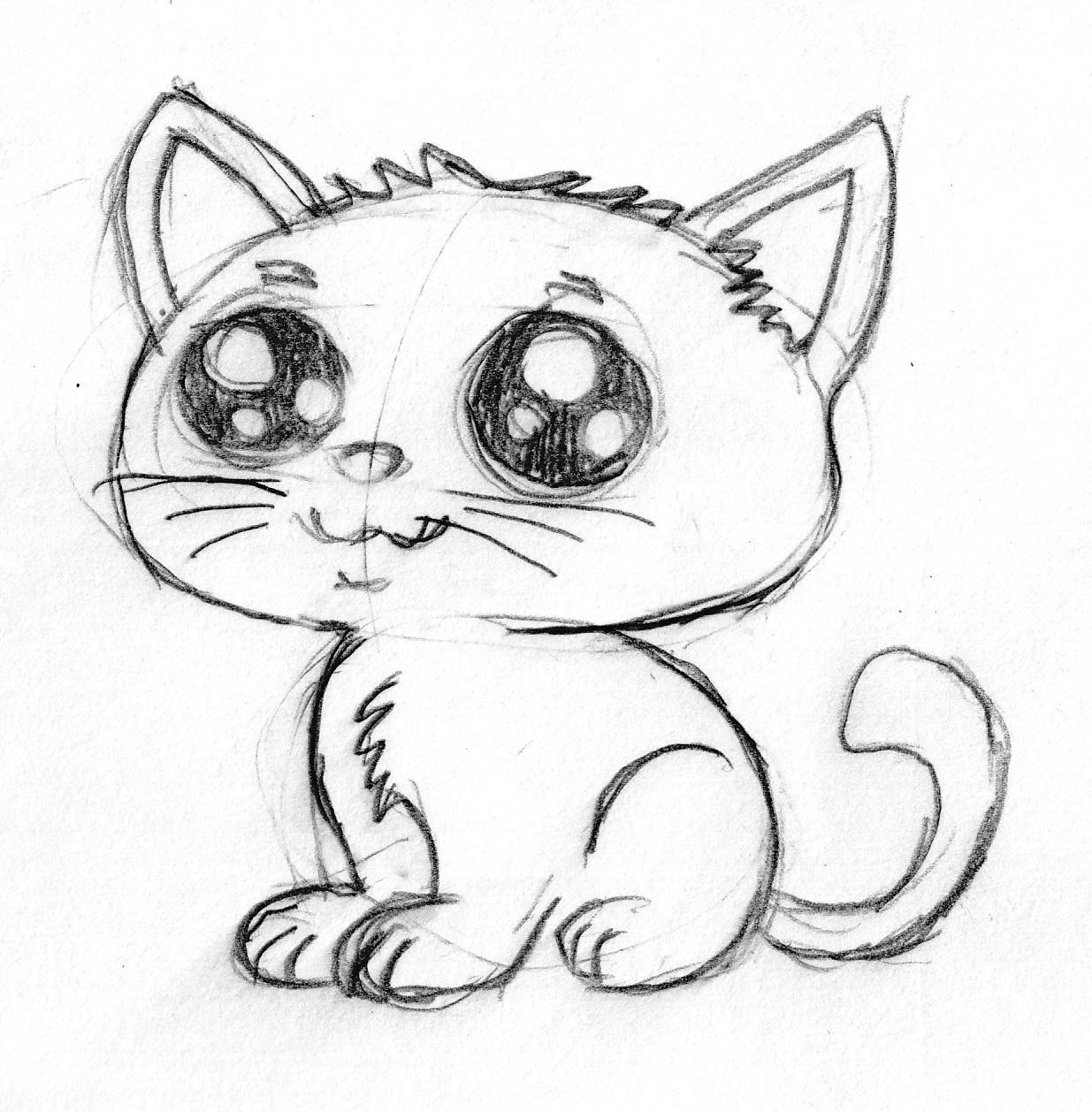 Cute Cartoon Kitten Pencil Sketch By Bhudda