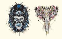 YOAZ: Graphic Animal Illustrations | LCA Critical Journal