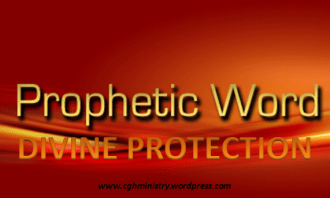 One of the Prophetic Promises of 2016 - #Divineprotection