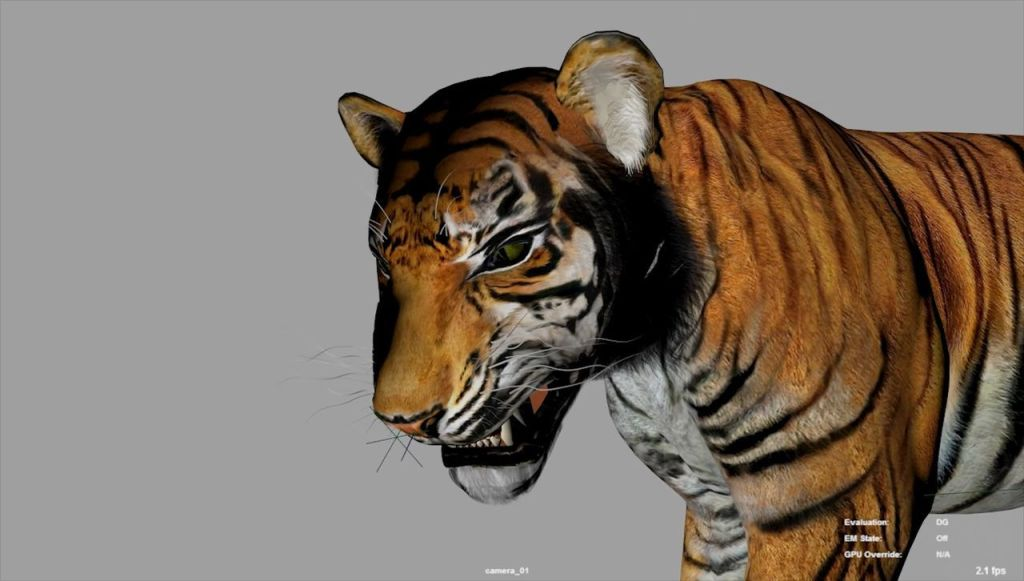 Making of Tiger Scene Breakdown