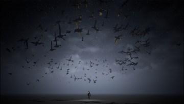 Bird Flock in UE5 Niagara | Download Project Files