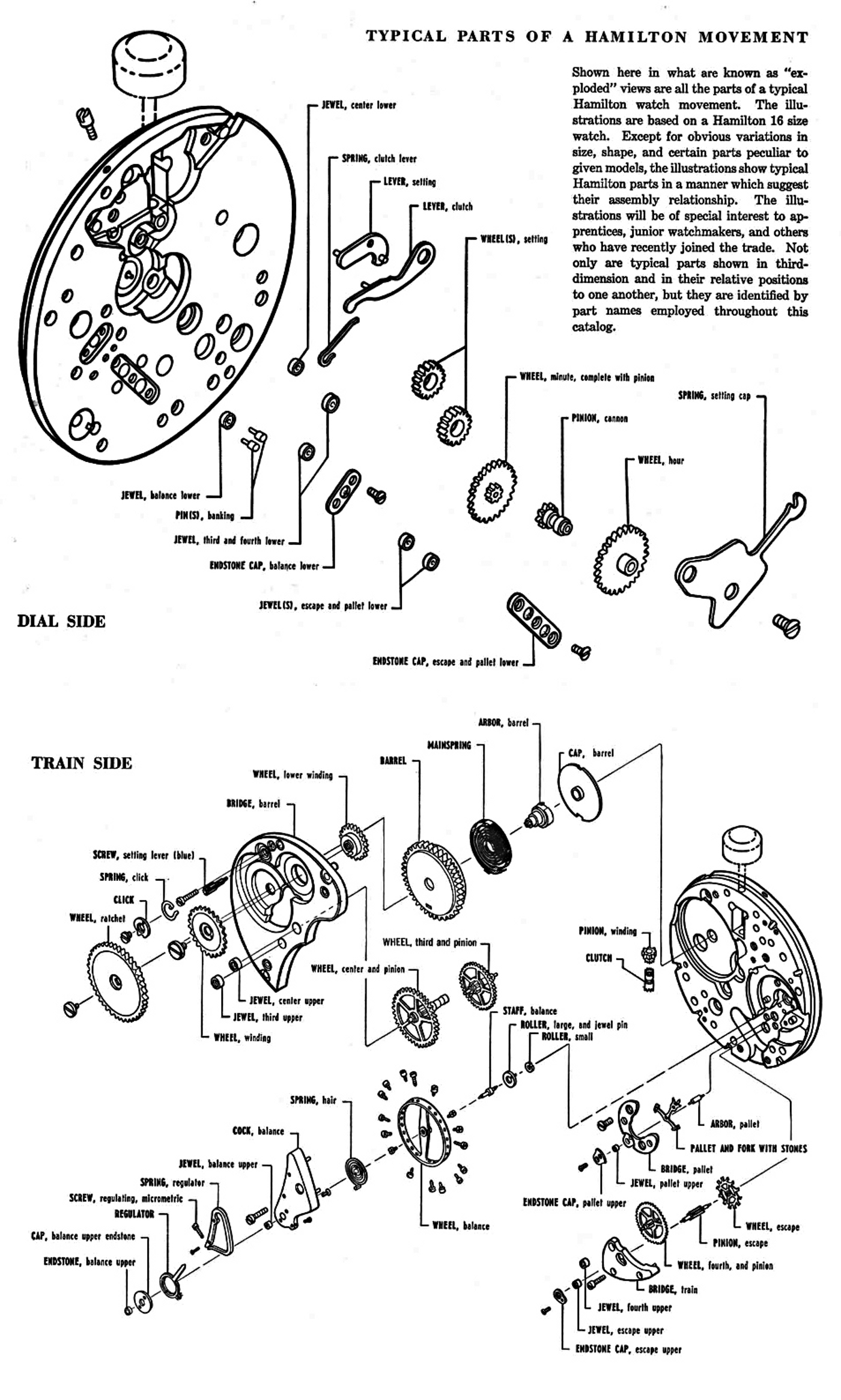 Wiring Diagram Mercury 402 Boat Motor Binatanicom