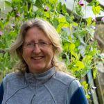 Meet the Team Behind Community Gardens Ireland