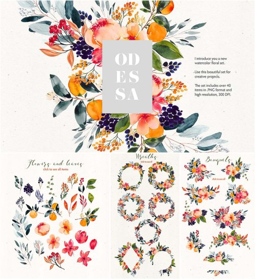 small resolution of odessa floral watercolor clipart