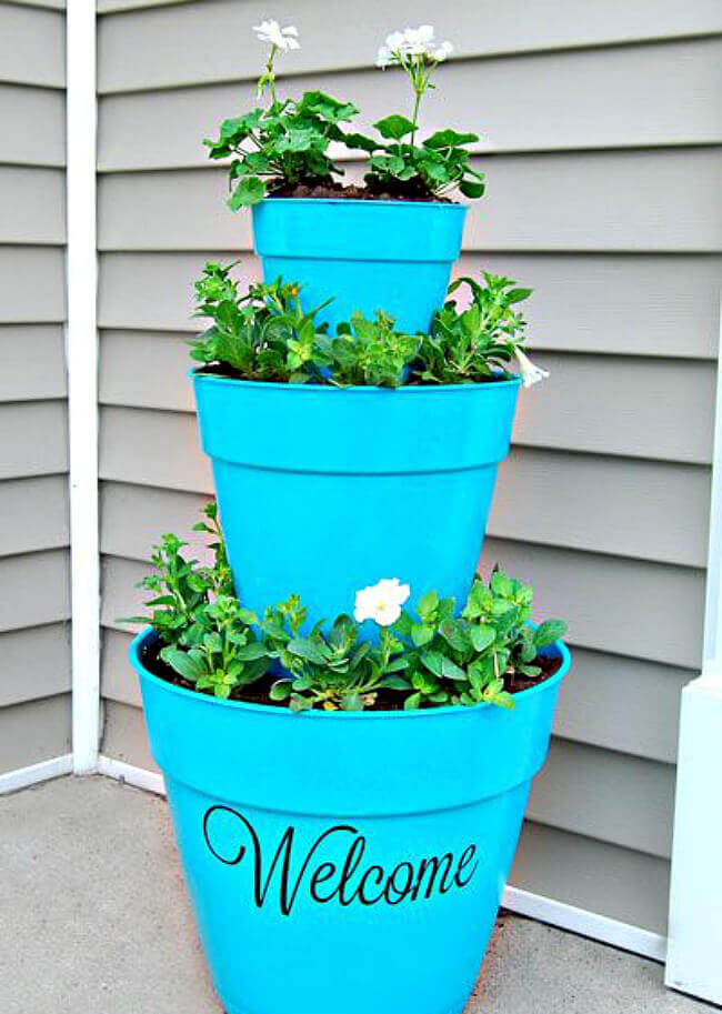 Quick and easy front door pot plant ideas to liven up your home for a good first impression.