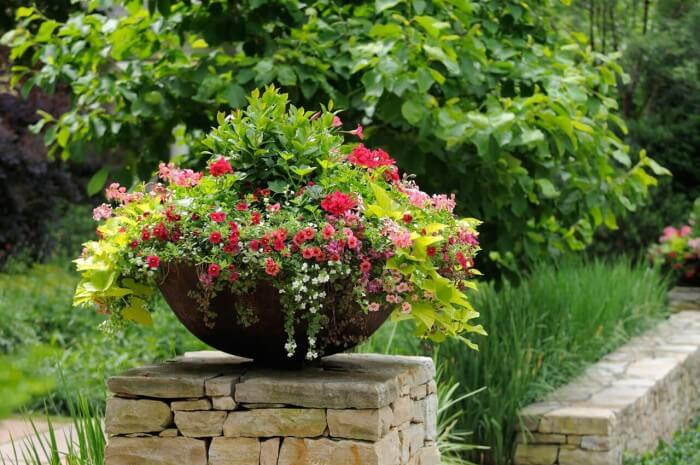 Cheap and Easy small front yard landscaping to beautify your garden on a budget - Inspirational Gardening Ideas