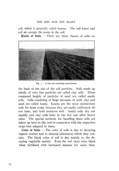 Classic Farming, Plant Production, and Horticulture image 2