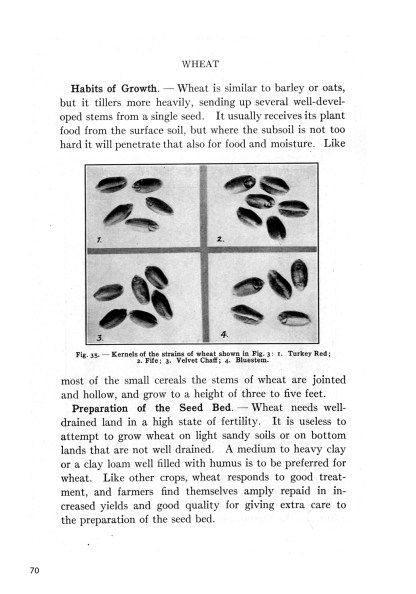 Classic Farming, Plant Production, and Horticulture image 3