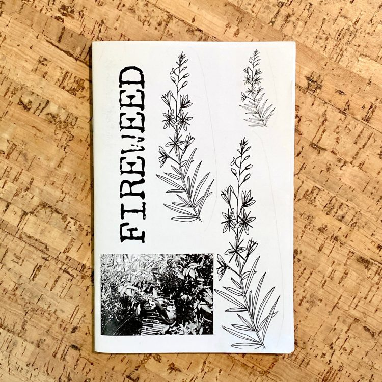 Fireweed #2: A Zine of Grassroots Radical Herbalism and Wild Foods Connecting with Kids and Family Life