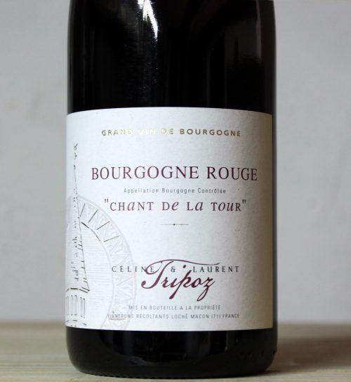 Céline et Laurent Tripoz Bourgogne Rouge 'Chant de la Tour' 2019