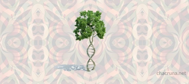 Biological psychedelic