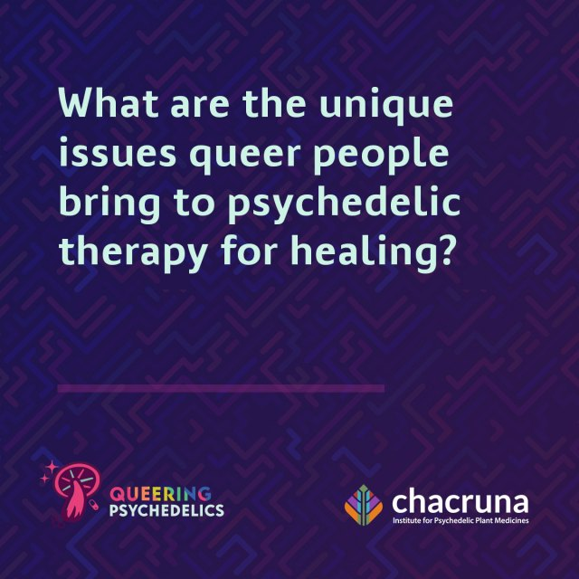 What are the unique issues queer people bring to psychedelic therapy for healing?