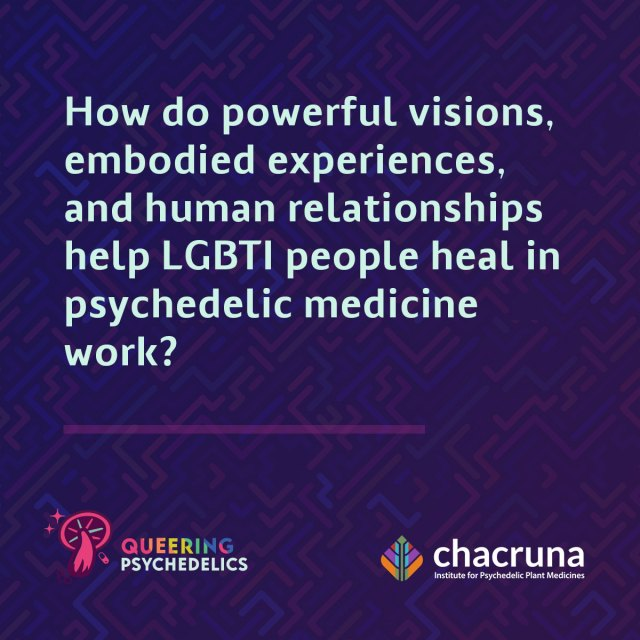 How do powerful visions embodied experiences and human relationships help LGBT people heal in psychedelic medicine work