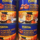 pumpkin-spiced-food-stuff-12