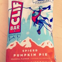 pumpkin-spiced-food-stuff-20