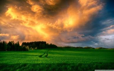 stunning_landscape-wallpaper-1280x800
