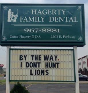 I-dont-hunt-lions