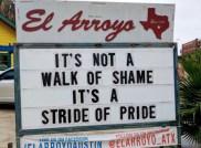best-damn-photos-pride-stride