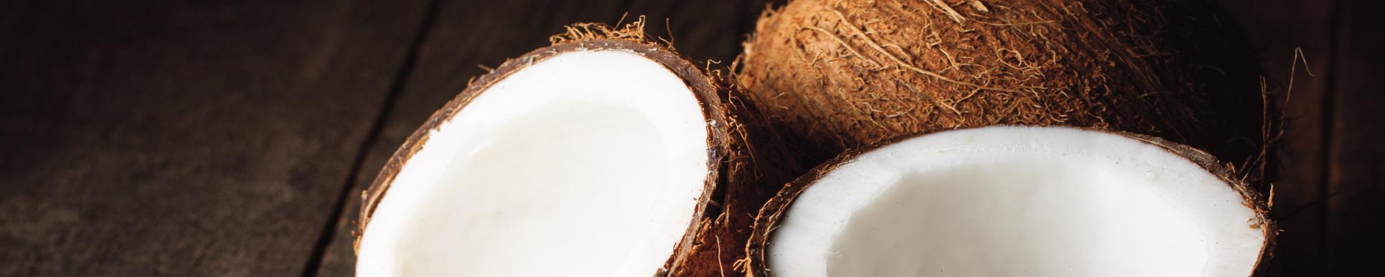 h_coconut2