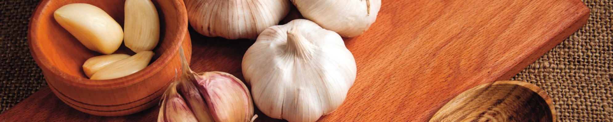 h_garlic2