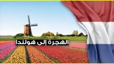 الهجرة الى هولندا 2021 عن طريق العمل بدون دفع أي تكاليف