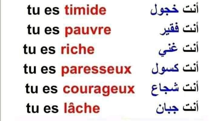 تعلم تعلم اللغة الفرنسية من الصفر الى الاحتراف عن طريق التطبيقات المجانية