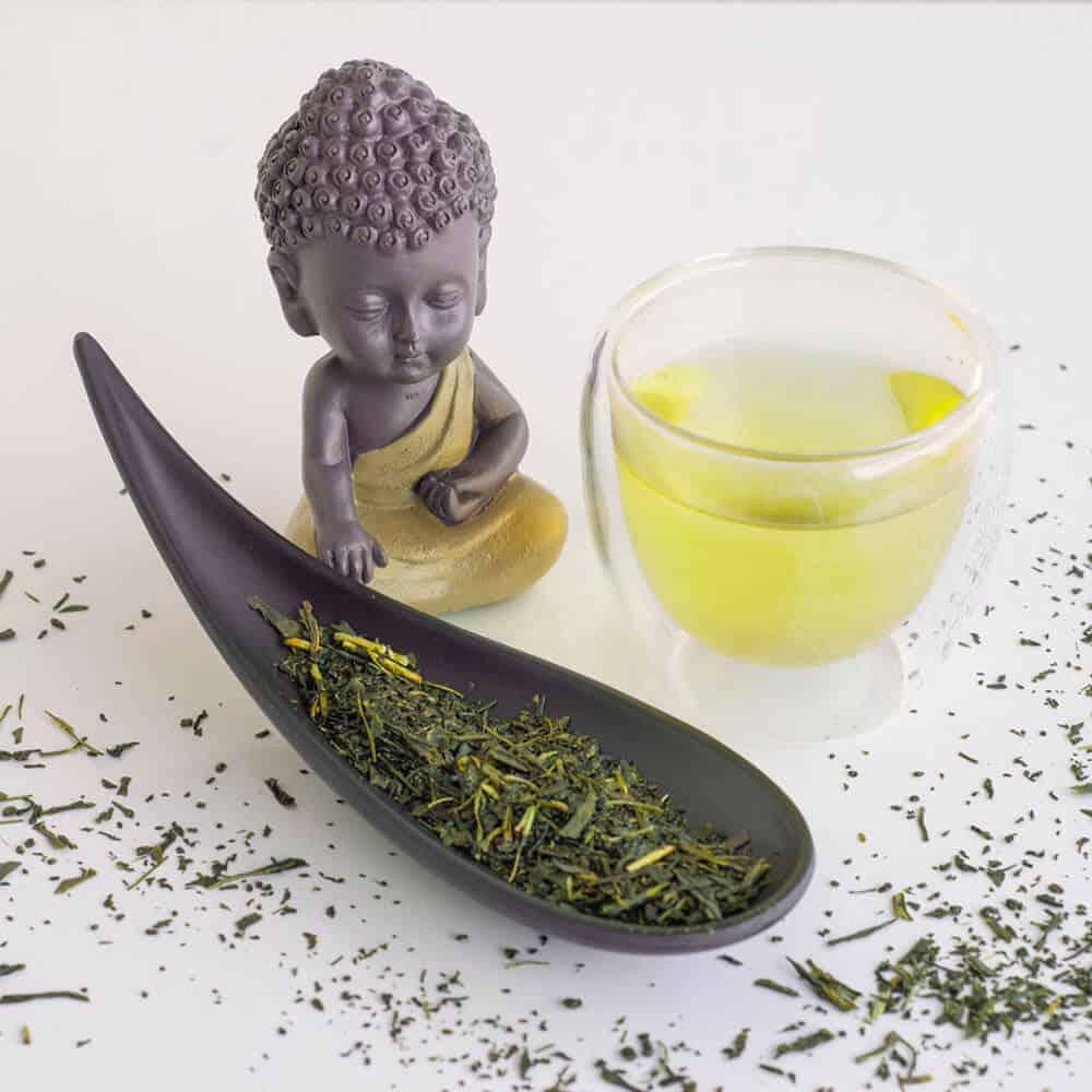 Chá Verde Shincha | Yamamotoyama