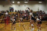 Cardinal Volleyball To Compete At Loaded Gothenburg Tournament