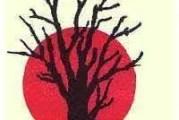 37th Willow Tree Festival Begins In Gordon