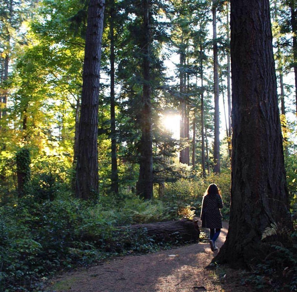 Trails in Victoria, BC