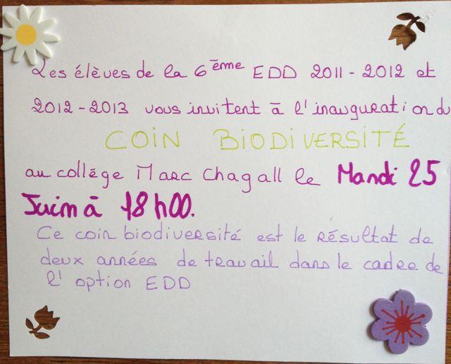 Préférence invitation en anglais - Chatterzoom MQ57