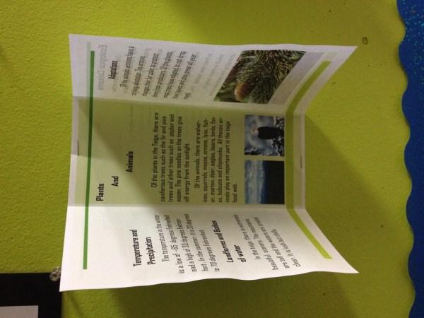 Tundra Biome Brochure Project