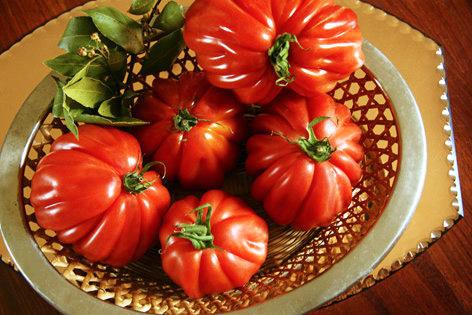 tomatoes Une daube improvisée