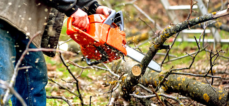 chainsaw safety tips how