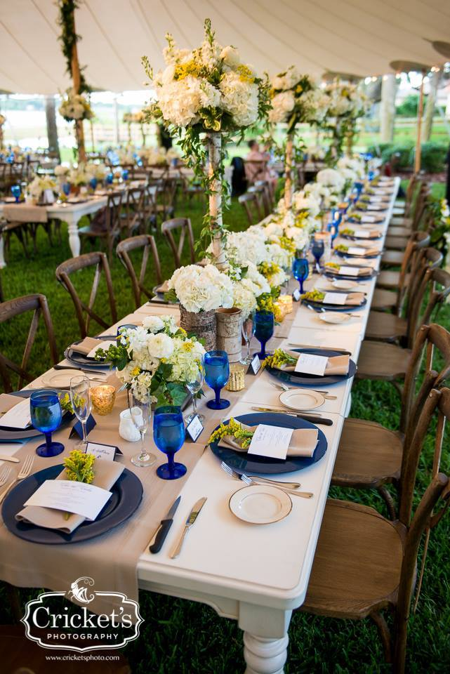 Clare and Carlos French Country Chic Wedding  A Chair
