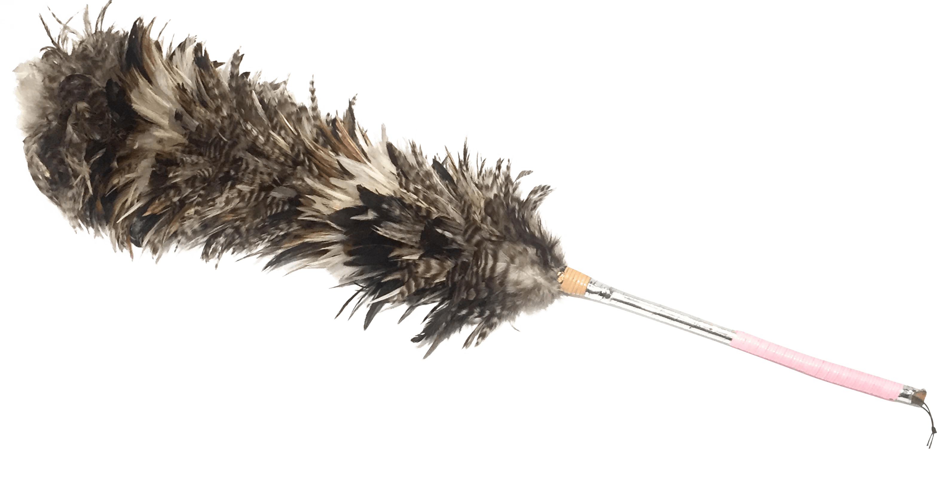 Vintage Long Feather Duster  Chairish