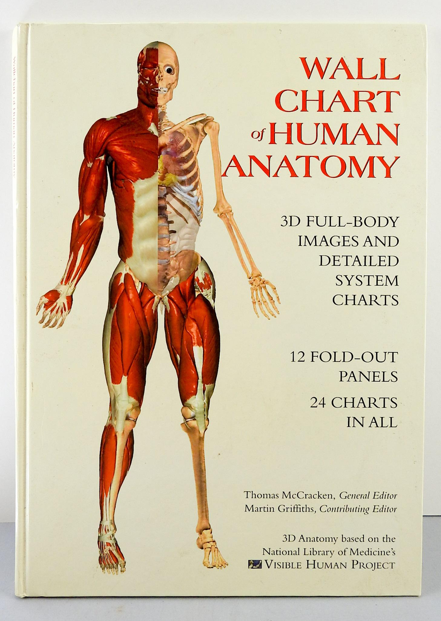 Wallchart of human anatomy  full body images detailed system charts also book chairish rh