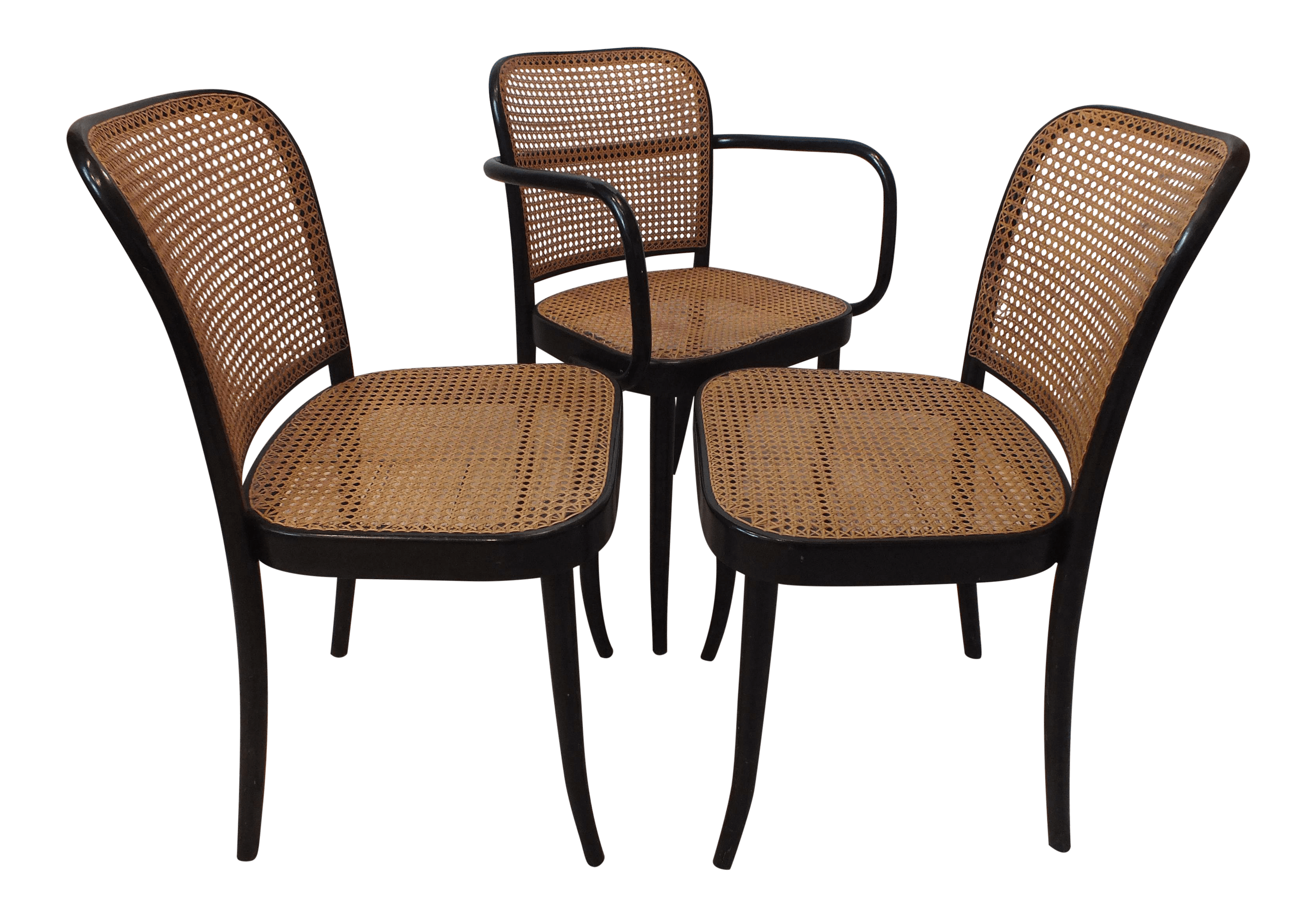 where can i buy cane for chairs lightweight camp vintage thonet prague bentwood set of 3 chairish