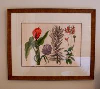 Custom Framed Botanical Art - A Pair | Chairish