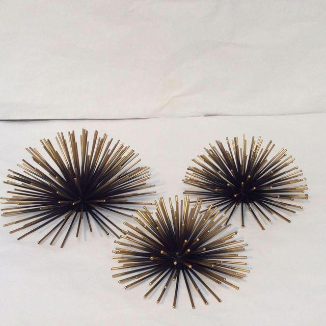 Gold Tipped Sea Urchin Wall Decor Set Of 3 Chairish