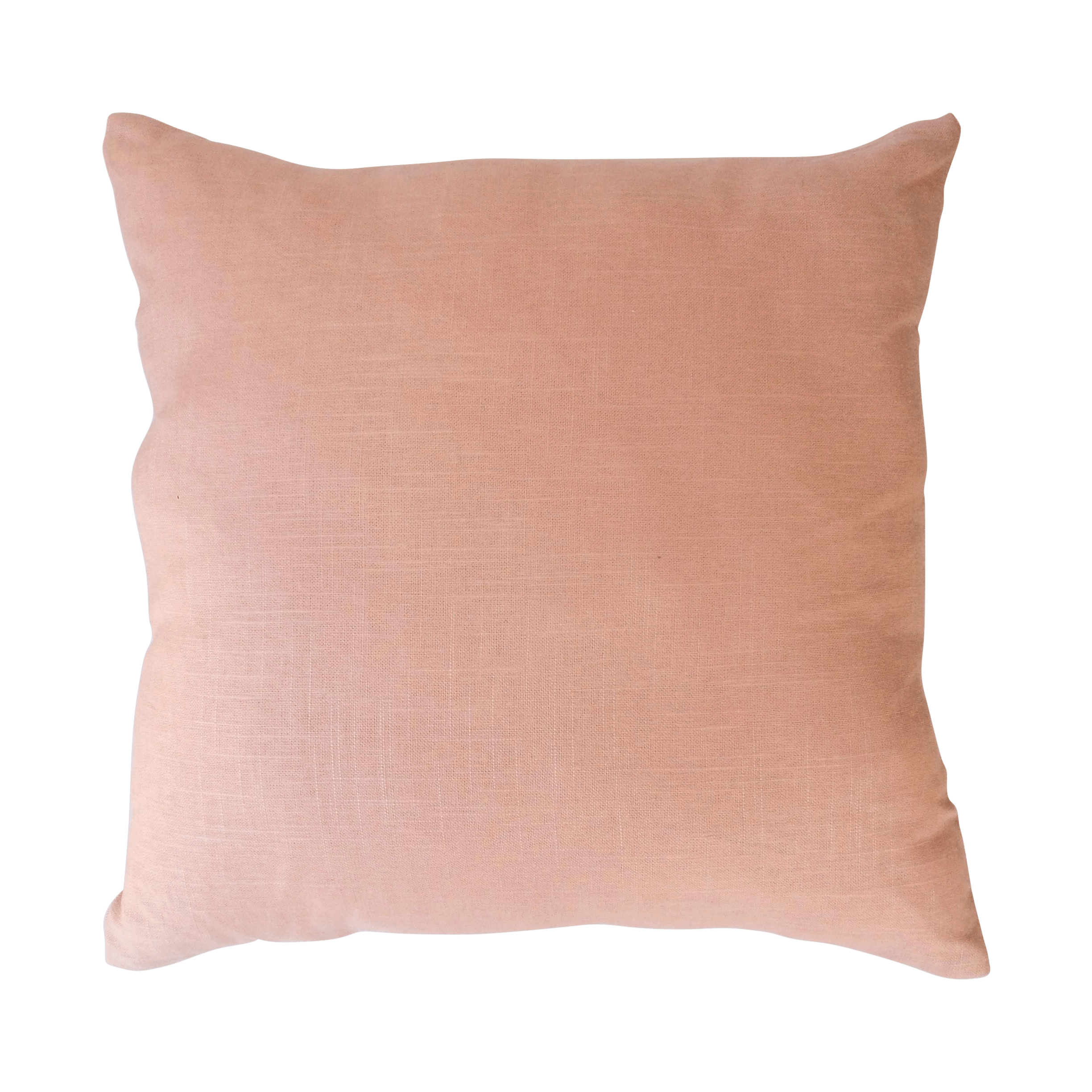 Light Pink Pillows  Pair  Chairish