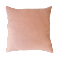 Light Pink Pillows - Pair | Chairish