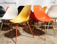 Mid-Century Plastic Molded Shell Chairs - Set of 12 | Chairish